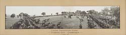 Laying Foundation Stone Canberra 1913 2' 1� x 15�